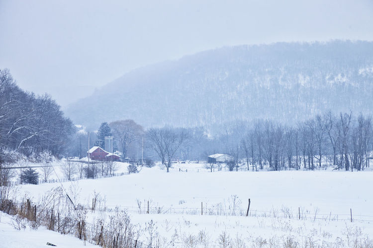 Snowy rural valley in southern Minnesota Winter Snow Scenics - Nature Landscape Snowing Outdoors Trees Buildings Hills No People Southern USA Minnesota Photography Color Image Cold Temperature Field Bluff Picturesque Tranquil Scene Fence Road