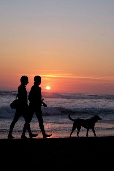 EyeEmNewHere Bali Sunset Silhouette Beach Dog Sea Domestic Animals Togetherness Nature Beach Life Pet Portraits EyeEmNewHere