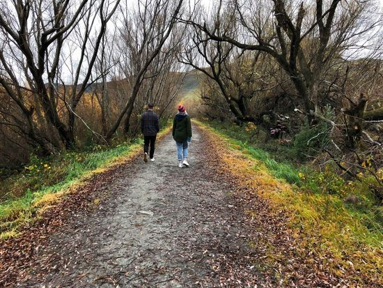 Couple Togetherness Explore New Zealand Great Outdoors Exploring Walk In The Forest Friends Real People Tree Two People Lifestyles Rear View Plant Walking Leisure Activity The Way Forward Nature