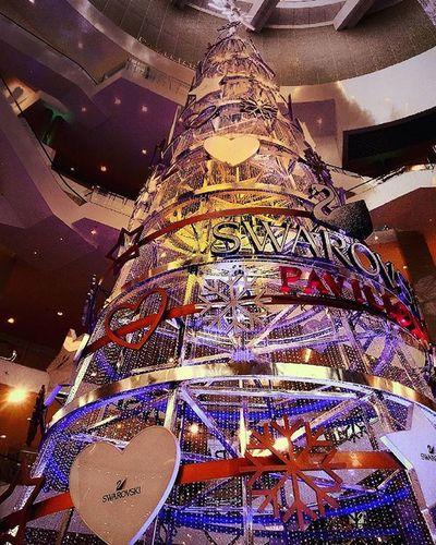 一闪一闪亮晶晶😊 Swarovski Christmas 2015  20151121 ❤❤❤ Pavilion