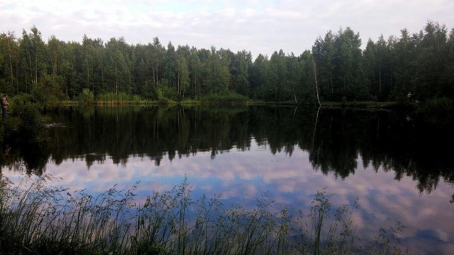Парк Сосновка Санкт-Петербург летние деньки день 3