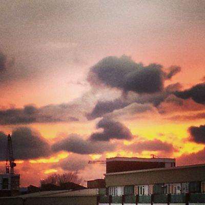 Selondon Selondonforever Silwood Silwoodestate silwoodtriangle silwoodregeneration sunset sunsets sunsetlovers sunsetporn sunset_pics sunset_united sunset_lovee sunsethunter sunset_lovers sunsetting sunsetlover sunsetsky