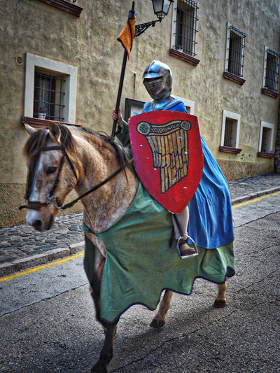 Cavalier  Horse Montblanc Sant Jordi 2016 Working Animal