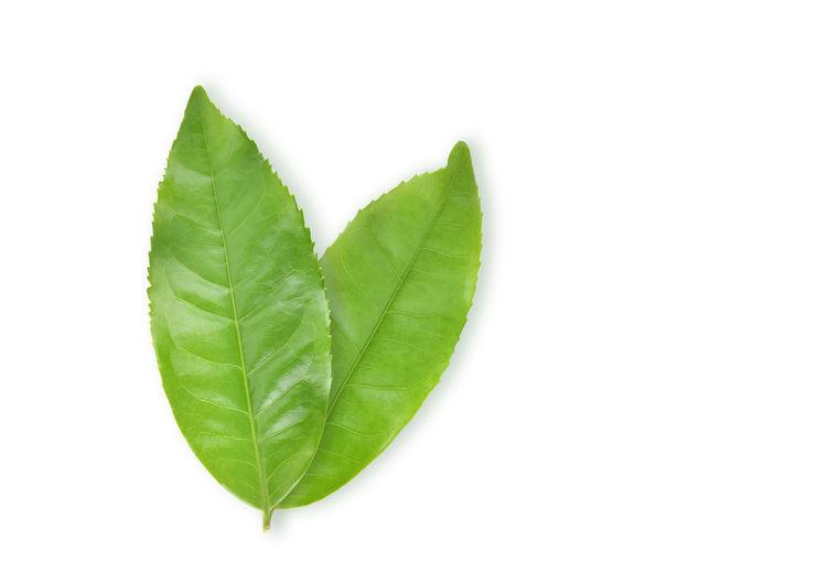 Tea Green Top