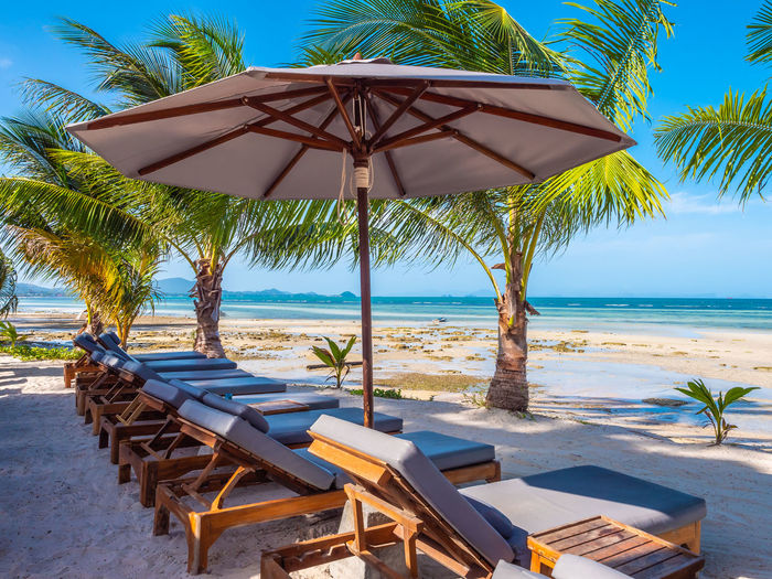 Beach Chair Horizon Horizon Over Water Land Lounge Chair Nature No People Outdoors Palm Tree Parasol Protection Sea Shade Sky Tranquil Scene Tranquility Tree Tropical Climate Umbrella Water
