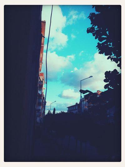 Sky life night