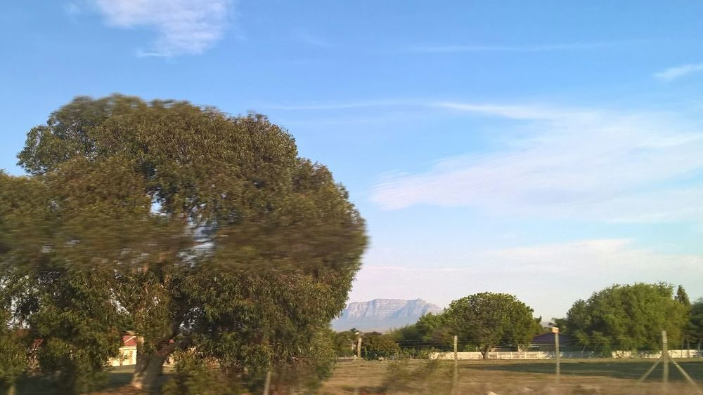 Its A Sunny Autumn Day Wispy Clouds Blue Sky No Filter, No Edit, Just Photography Cape Town Kuilsriver South Africa Street Photography My Hometown Table Mountain