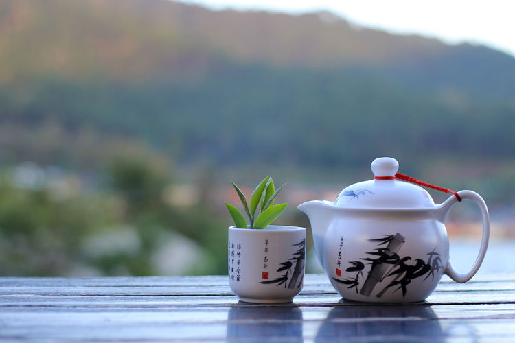 Would you like a cup of tea? EyeEm Selects Fressness Tea Ceramics Cup Day Drink Early Morning Floral Pattern Focus On Foreground Food And Drink Hot Drink Leaves Nature Outdoors Plant Potted Plant Refreshment Still Life Table Tea Tea - Hot Drink Tea Cup Tea Leaves
