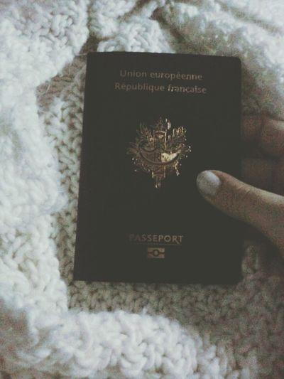 Passeport Holiday Trip Newyork ✌