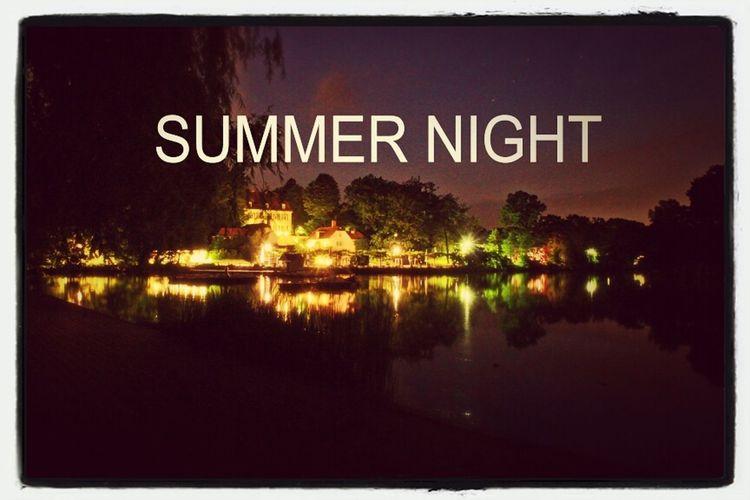Summer Sunset Nature Night Lights
