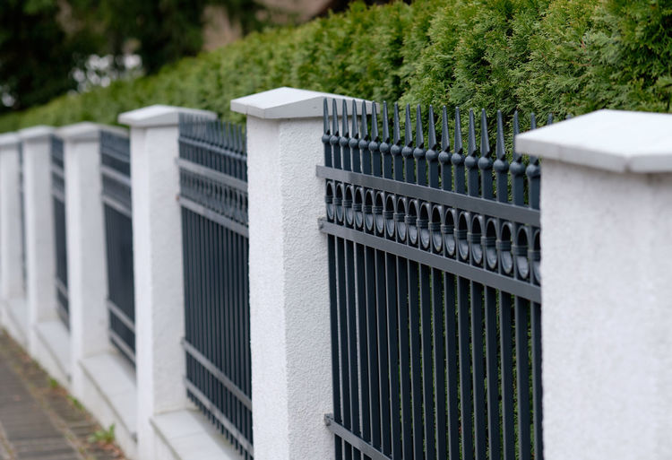 A beautiful elegant vintage grey and white fence made out of metal and stone with a green hedge in the city of Nuremberg, Germany, in March 2019 Plant Day No People Fence Barrier Outdoors Nature Boundary Security Safety Close-up Metal Forged Cast Iron Hedges Greylag Goose Gray White Background Green Color Vintage Decoration Garden House Horizontal Europe Germany Nuremberg Nürnberg Springtime Elegant Picket Fence Architecture Built Structure Focus On Foreground Building Exterior Protection In A Row Backgrounds