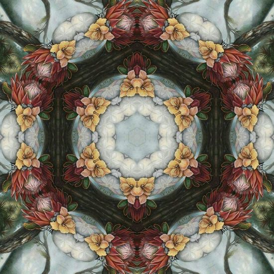 Hex Art - Pattern Backgrounds Flower Hexagon Art Arts Abstract Hexagonal Ink Full Frame Perspectives On Nature Multi Colored