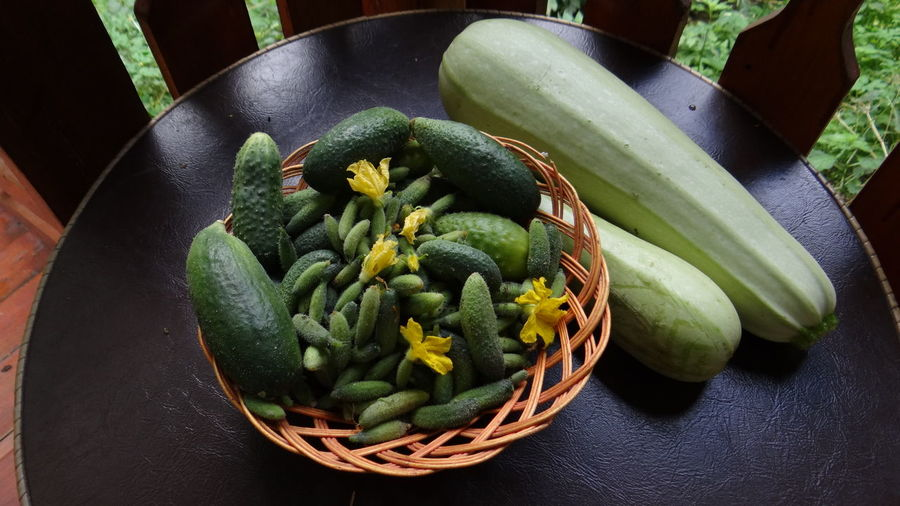 ThRemoved the last of the cucumbers and zucchini from the garden.e last pickles... Autumn Autumn Colors Cucumber Cucumbers Cuke Garden Garden Photography Green Green Color Green Green Green!  House Macro Macro Nature Macro Photography Macro_collection Nature Nature_collection Nature Photography Nature_collection Naturelovers Naturephotography Pickles Porch Yellow Zucchini
