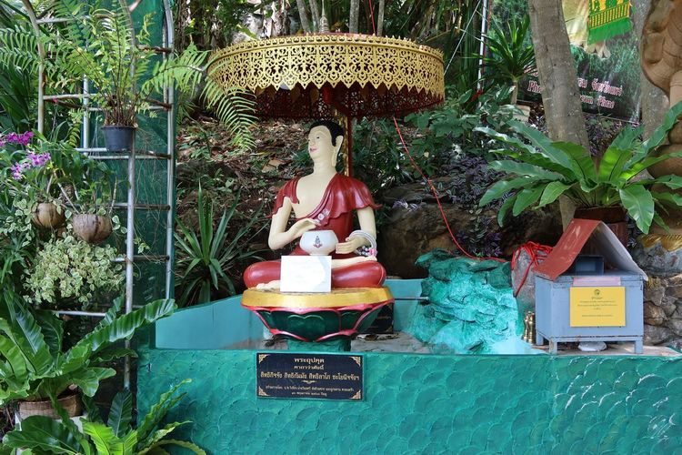 Statue of woman sitting by plants