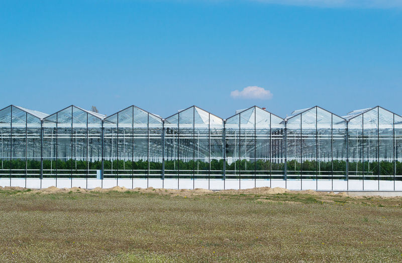 City Cityscape Agriculture Architecture Beauty In Nature Blue Botany Built Structure Copy Space Day Environment Field Greenhouse Growth Nature No People Outdoors Plant Plant Nursery Research Sky Street