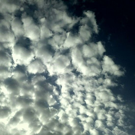 Puffy Clouds Sky Skylovers cloudlovers instagood igrecommend igaddict satx gmy