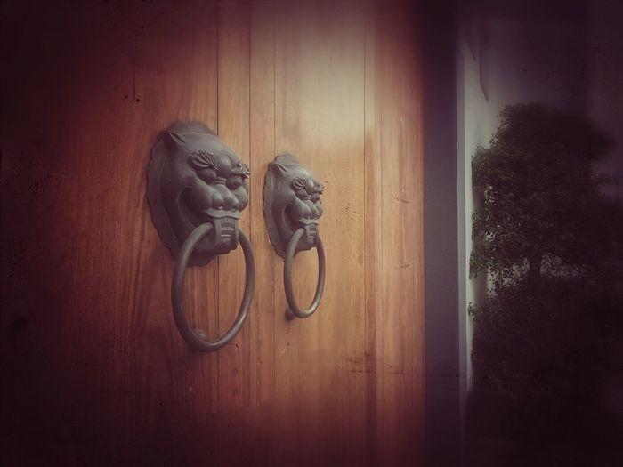 Close-up of closed door knocker
