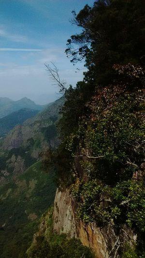 Pillar Rock Kodaikanal Guna Cave Steep Cliff