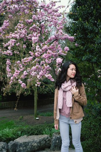 Full length of woman standing by pink flowering tree