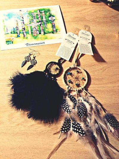 Stanly Park Dream Catcher Earring