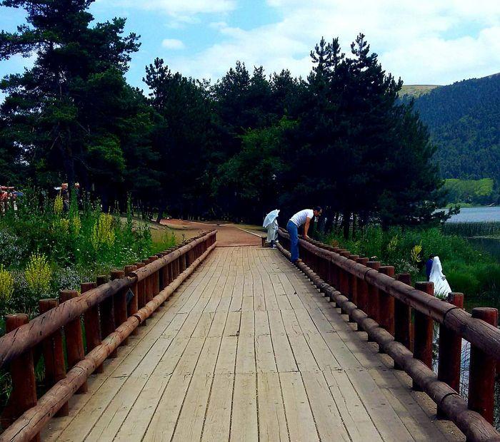 Turkey Abantgölü Nature_collection Learn & Shoot: Leading Lines