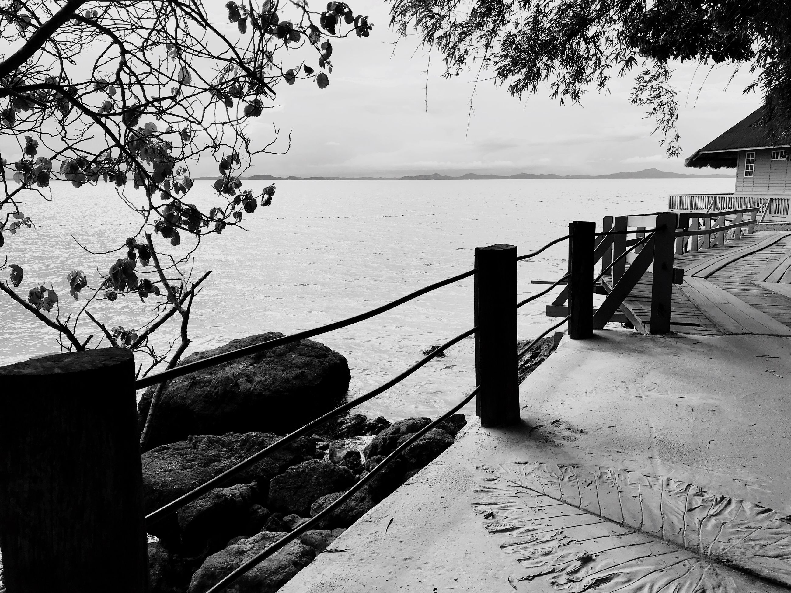 railing, sea, water, nature, outdoors, tranquility, scenics, tranquil scene, tree, day, no people, sky, branch, beauty in nature, architecture