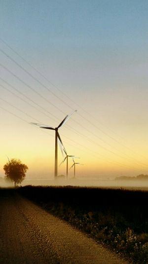 Wind Farm. Amanecer..