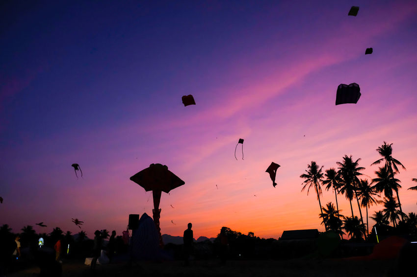 SAM-RAT BEACH - February 10, 2018: Thailand International Kite Festival on February 5, 2018 in Sam-rat beach, Suratthani province Thailand. SAM-RAT BEACH - February 10, 2018: Thailand International Kite Festival On February 5, 2018 In Sam-rat Beach, Suratthani Province Thailand. Beach Beauty In Nature Bird Day Flying Large Group Of People Leisure Activity Lifestyles Low Angle View Men Nature Outdoors Parachute Paragliding People Real People Scenics Silhouette Sky Sunset Tranquility
