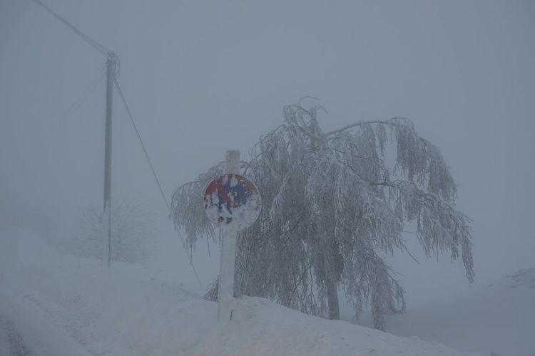 schneesturm mit