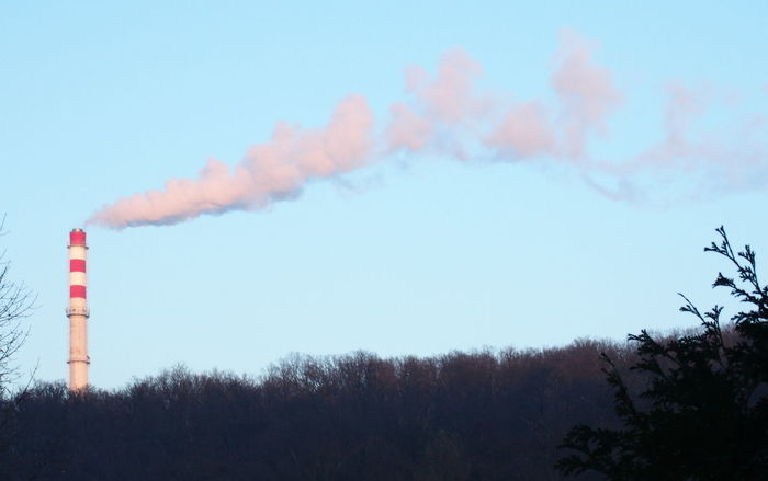 Air Pollution Chimney Clear Sky Low Angle View No People Outdoors Smoke - Physical Structure Smoke Stack Tree