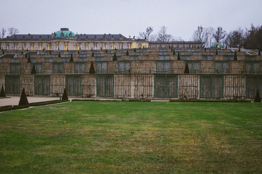 Park Sansoucci in hibernation during wintertime - Potsdam, Germany German Architecture Building Building Exterior Built Structure Day Field Grass Green Color History Land Nature No People Old Outdoors Palace Plant Sansoucci Sky The Past Tree