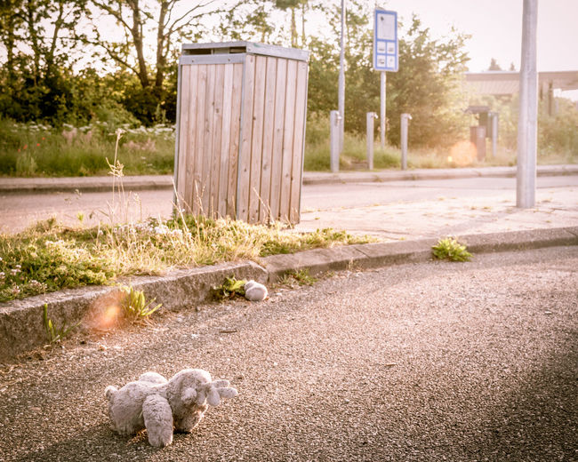 Childhood Memories Cuddly Toy Destruction Harm Leftbehind Lensblur Parking Lot Plush Toy Stuffed Toy Trash