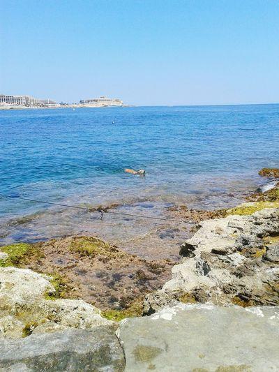 Malta Exiles Sliema Beach