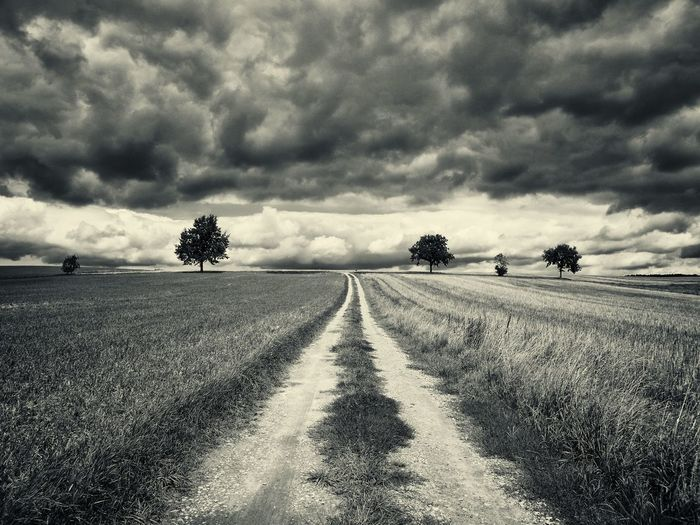 my way Agriculture Agrigulture Beauty In Nature Blackandwhite Cloud - Sky Clouds Day Field Grass Growth Landscape Nature No People Outdoors Road Rural Scene Scenics Sky The Way Forward Tire Track Tone Splitting Track Tranquil Scene Tranquility Tree EyeEmNewHere
