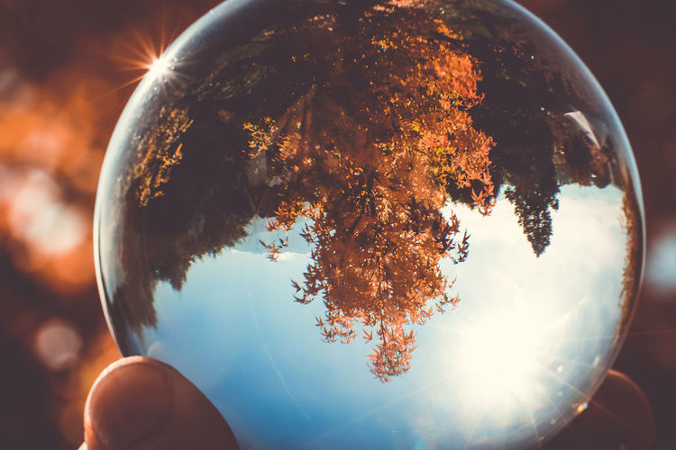 small world Sky Nature Sunlight Human Hand Hand Personal Perspective Lens Flare Real People Holding Sphere Close-up Unrecognizable Person Outdoors Body Part Day Tree Finger