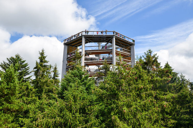 Observation tower in forest Observation Point Architecture Beauty In Nature Building Exterior Built Structure Cloud - Sky Day Forest Growth Low Angle View Nature Observation Tower Outdoors Sky Tower Travel Destinations Tree Treetop Treetops Treetopwalk