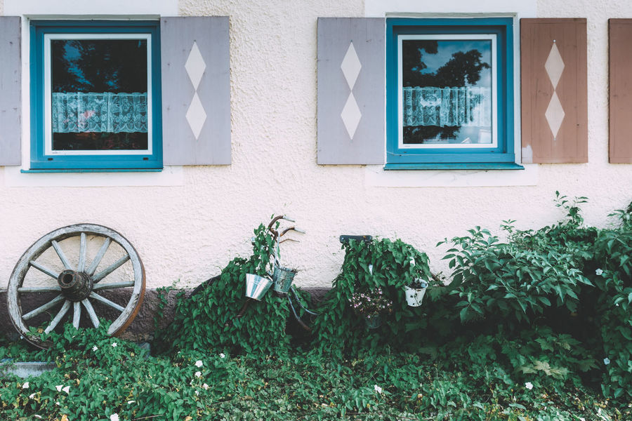Bauernhof Bike Bikes Buckets Building Exterior Country Country Life Country Living Countrylife Countryside Façade Farmhouse Green Color Growth Nature No People Old Bike Outdoors Overgrown Tranquility