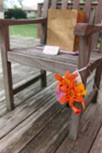 Beauty In Nature Close-up Flower Focus On Foreground Nature No People Outdoors Simple Party Ideas Wood - Material