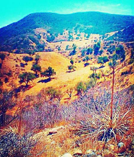 Beautiful foothills in moorpark Nature Outdoors Landscape Moorpark Vcoutdoors Southern California First Eyeem Photo EyeEmNewHere