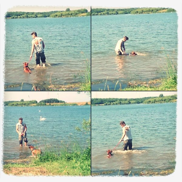 teaching the dog to.swim at the QE2 yesterday QE2 Dog Swimming Lake Good Day Out