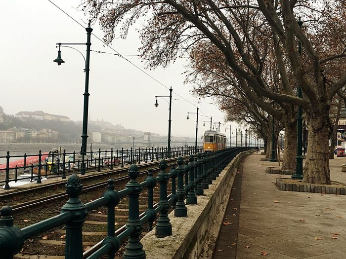 Tram Yellow Trees Riverside Vintage Winter