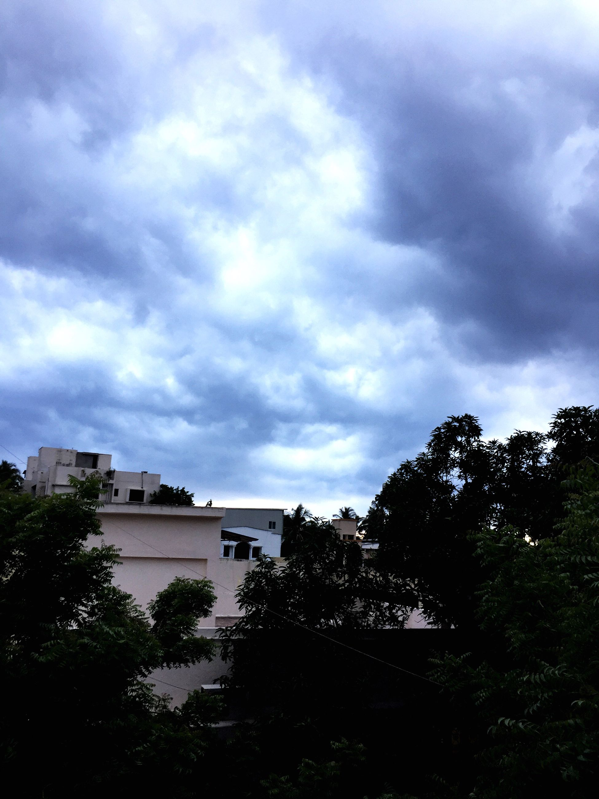 tree, sky, cloud - sky, built structure, architecture, nature, silhouette, building exterior, no people, outdoors, low angle view, day, beauty in nature, scenics, storm cloud, city