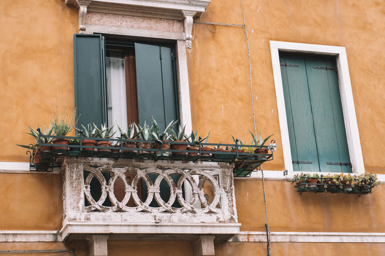 balcony Building Exterior Architecture Built Structure Window Building No People Residential District Potted Plant House Day Outdoors Wall - Building Feature Balcony Wall Door Entrance Railing Plant Nature City Houseplant Italy Venice