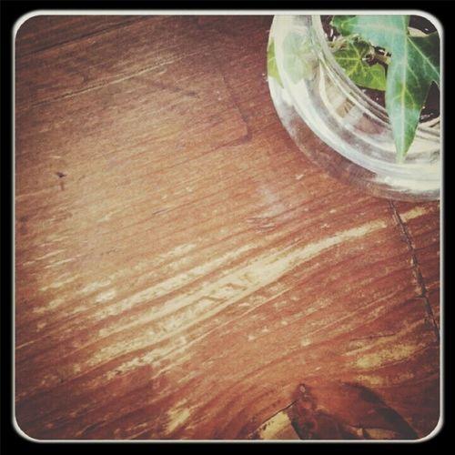 Wood Green 9/1