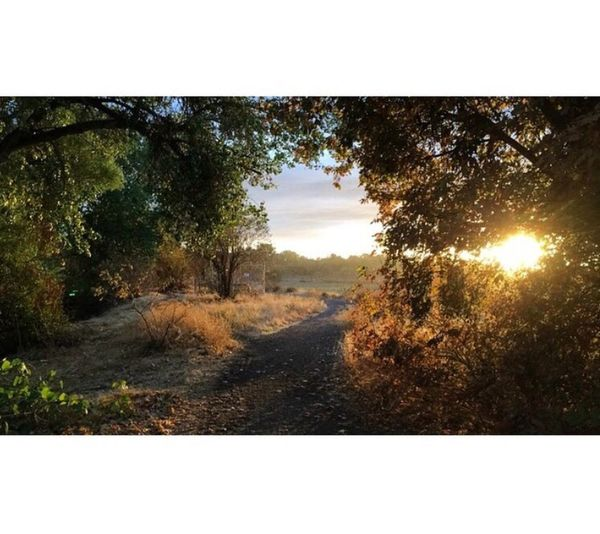 Stanislaus River Trail