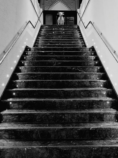 Staircase Steps And Staircases Travel Destinations Architecture Restaurant Memories Beautiful Day Architecture