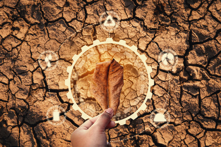 Human Hand Holding Nature One Person Dry Close-up Outdoors Finger Brown Day Leaf Drought Cracked Environment Problem Crisis Icon Saving Protection