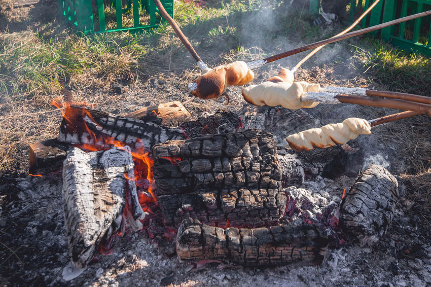 Nature No People Burning Fire - Natural Phenomenon Heat - Temperature Barbecue Animal Day Meat Fire Food Animal Themes Flame High Angle View Grilled Outdoors Preparation  Firewood Bonfire Land Preparing Food Campfire