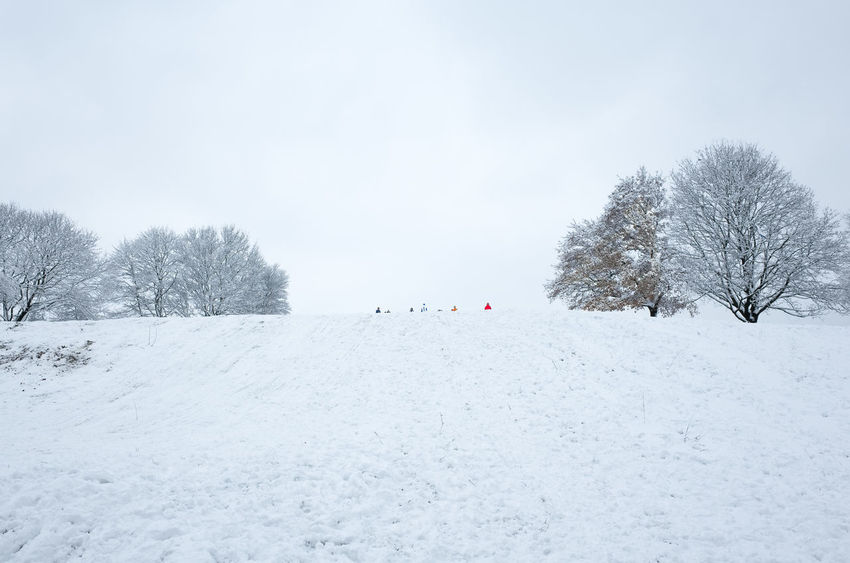 Olympic Hill Munich Sledging Winter Bare Tree Beauty In Nature Cold Temperature Day Nature Outdoors People Sky Snow Snowing Tranquility Tree White Color Winter