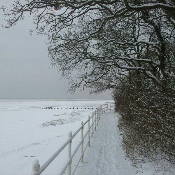 Jadebusen Strand bei Eis und Schnee - Dangast